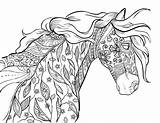 Coloring Horse Pages Adults Printables sketch template