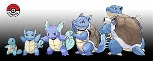 Pokemon Bulbasaur Evolution Images | Pokemon Images