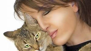 Katzen Fernhalten Von Möbeln : besser nur eine oder gleich zwei katzen ins haus holen ~ Michelbontemps.com Haus und Dekorationen