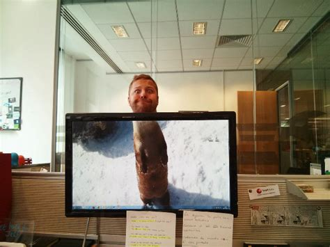 collegue de bureau créer un zoo avec ses collègues quand on s 39 ennuie au