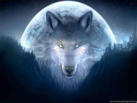 Cool Animal Wallpapers Wolf - cool wolf backgrounds 11071 hd wallpapers in animals