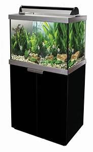 Großes Aquarium Kaufen : fluval studio 900 aquarium set in schwarz g nstig kaufen im koi shop ~ Frokenaadalensverden.com Haus und Dekorationen