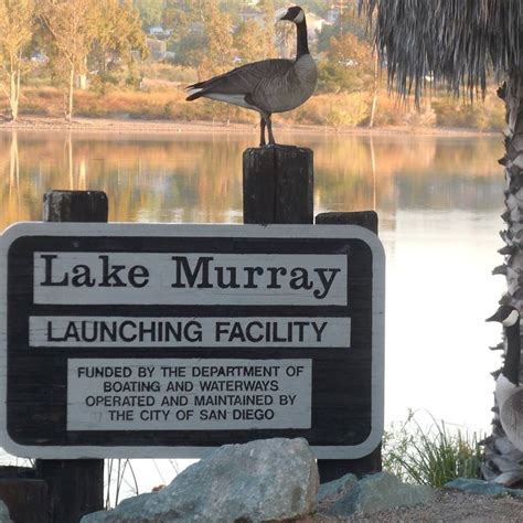 Lake Murray Marina Boat Rentals by Navy Mwr Fiddler S Cove Marina And Rv Park Home