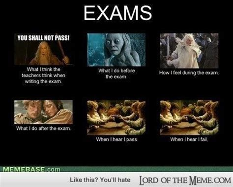 Funny Lord Of The Rings Memes - this is actually what i feel when i do an exams lord of the rings memes and funny pics