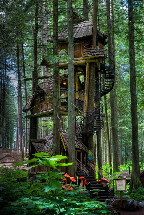 17 Of The Most Amazing Treehouses From Around The World