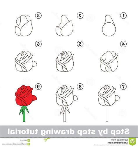 How To Draw A Flower Step By Step For Beginners Flowers