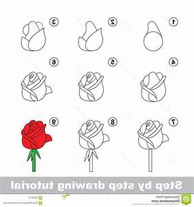 How To Draw A Flower Step By Step For Beginners - Flowers ...