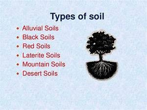 Different types of soil
