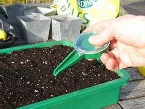 Quand Planter Les Tomates Cerises : semer la tomate quand comment ~ Farleysfitness.com Idées de Décoration