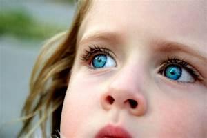 Yeux Verts Rares : les yeux verts ~ Nature-et-papiers.com Idées de Décoration