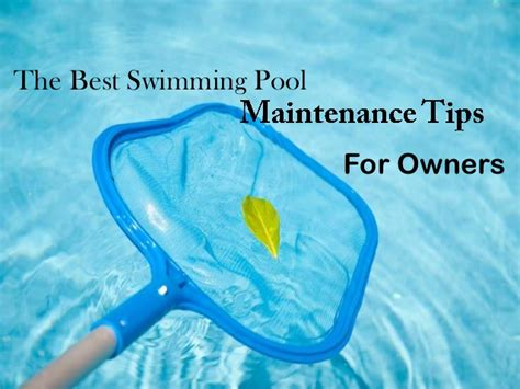 best for owners the best swimming pool maintenance tips for owners