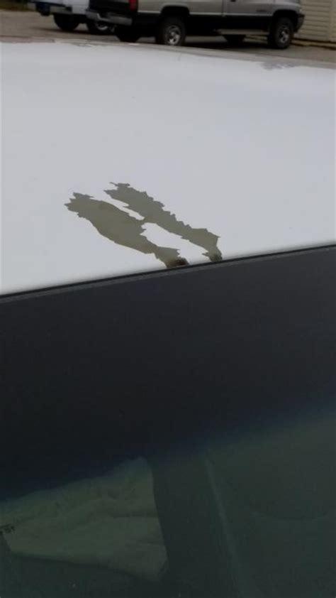 2015 Hyundai Elantra Complaints by 2015 Hyundai Elantra Paint Is Chipping Peeling 3 Complaints