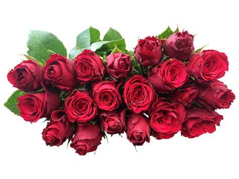 rote rosen  bestellen bei bezahlbare blumende
