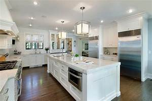 taj mahal quartzite countertops transitional kitchen With kitchen cabinets lowes with taj mahal wall art