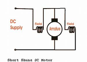 Types Of Dc Motor Separately Excited Shunt Series Compound