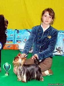 Dog Show 26 11 2011 - N U00e4ituste Tulemused - N U00e4ituste Tulemused