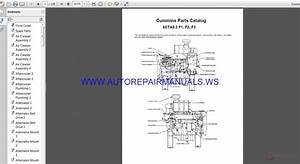 Cummins 6cta8 3 Parts Catalog