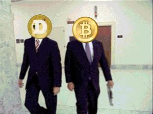 dogecoin gifs find share  giphy