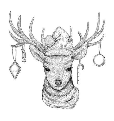 Christmas Deer Black White Ink Illustration Eugenia