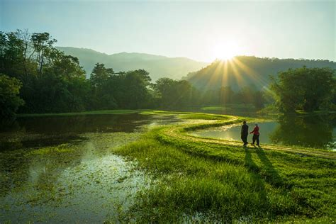 taiping travel malaysia lonely planet