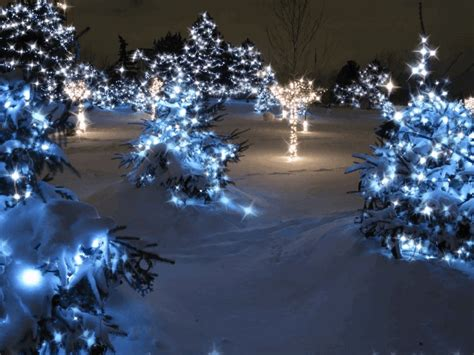 twinkling animated christmas lights pictures photos and