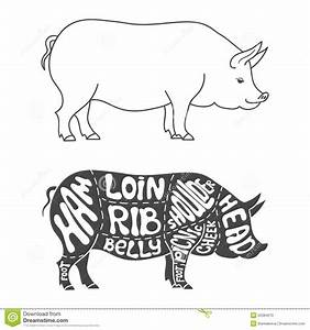 Pork Cuts Diagram Stock Vector