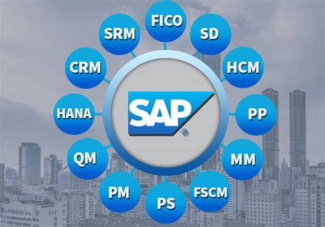 sap modules sap philippines mustard seed systems