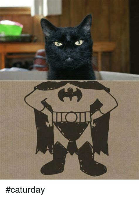Caturday Meme - caturday caturday meme on sizzle