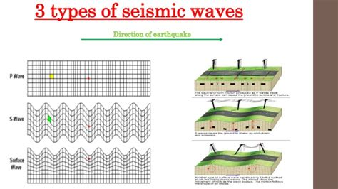What Are The 3 Main Types Of Seismic Waves? How Do They