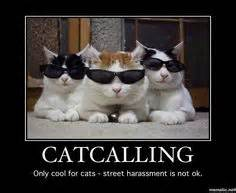 cats against catcalls cats against catcalling on harassment
