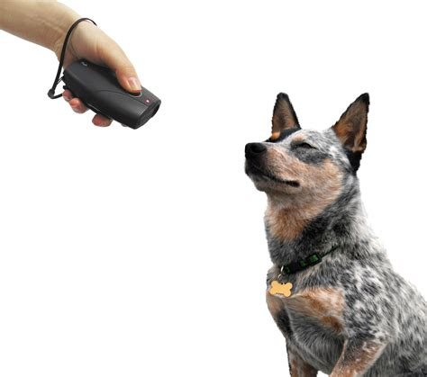advantages  disadvantages   dog barking control