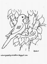 Coloring Bird Robin Nest Printable Birds Drawing Robins Wren Adult Coloringpagesbymradron Sheets Sheet Printables Feather Getdrawings Preschool Spring Build Getcolorings sketch template