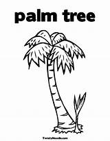 Tree Cartoon Palm Trees Clipart Drawing Coloring Easy Library Cliparts Colouring Letter Pages Clip Begins Key Getdrawings Coloringhome sketch template