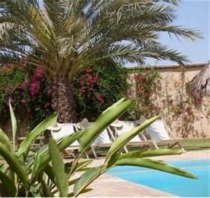 quelle vegetation autour de la piscine With marvelous quelle plante autour d une piscine 5 quelles plantes autour de la piscine