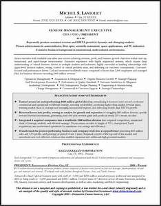 24 award winning ceo resume templates wisestep With ceo resume sample