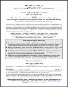 24 award winning ceo resume templates wisestep With free ceo resume templates