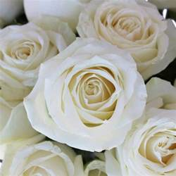 corsage prices avalanche white