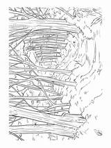 Forest Coloring Pages Nature Printable Print sketch template