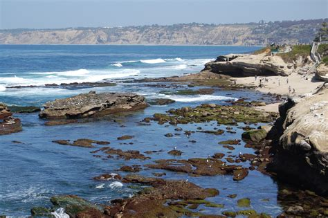 La Jolla Cove, A Paradise For Swimming And Diving