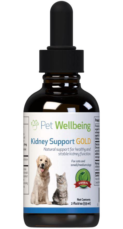 kidney support gold  cat kidney disease feline kidney