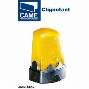 Came Bx 74 : motorisation came bx 74 400kg 4m de cr maill res ~ Melissatoandfro.com Idées de Décoration