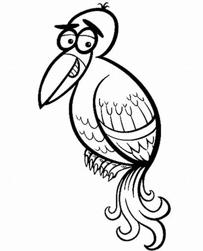 Coloring Bird Exotic Birds Funny Pages Topcoloringpages