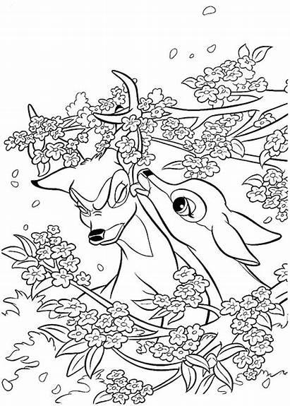Coloring Pages Random Animal Sheets Disney