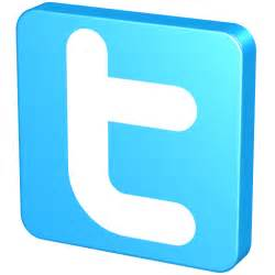 Blue Twitter Icon - 3D Social Icons - SoftIcons.com