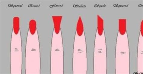 nail shapes  names diy manicurenail stuff pinterest diy manicure nail stuff