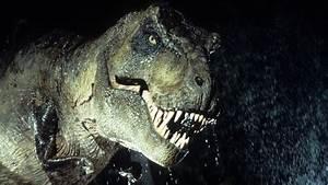 Om Nom Nom  T  Rex Was  Indeed  A Voracious Hunter   Npr