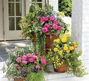 Blumenkübel Bepflanzen Vorschläge : gro e blumenk bel bepflanzen 60 ideen bilder und vorschl ge garten pinterest ~ Whattoseeinmadrid.com Haus und Dekorationen