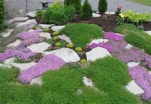 Steingarten Am Hang : steingarten gartendeko thymian bodendecker lila steine idee garten ~ Eleganceandgraceweddings.com Haus und Dekorationen