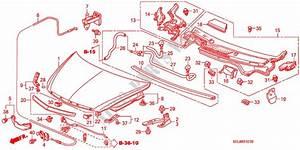 Engine Hood  Rh  For Honda Cars City Zx Vti 4 Doors 5