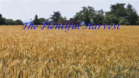 The Plentiful Harvest | Southern Idaho Ministry Network